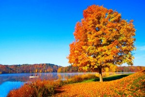 Őszi kirándulóhely
