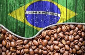 Brazil kávé
